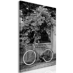 Quadro Bicycle and Flowers 1 Part Vertic