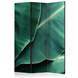 Paravento Banana Leaf Room Dividers