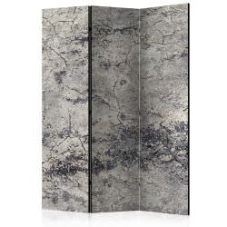 Room Divider Grey Lady [Room Dividers