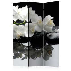 Room Divider Spa Stones and Orchid [
