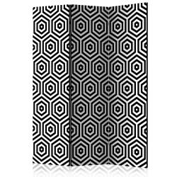 Room Divider Black and White Hypnosis