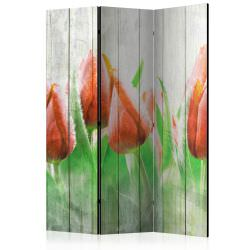 Room Divider Red tulips on wood [Room