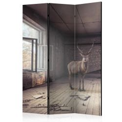 Room Divider Lost [Room Dividers]