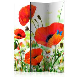 Room Divider Country poppies [Room Di