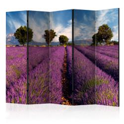 Biombo Lavender field in Provence Fr