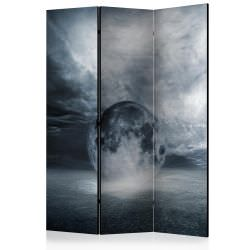 Room Divider The lost planet [Room Di