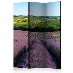 Room Divider Lavender fields [Room Di