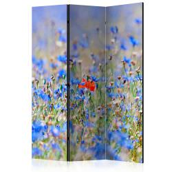 Room Divider A skycolored meadow c