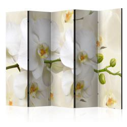 Biombo Orchid Branch II Room Divider
