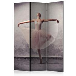 Room Divider Classical dance poetry