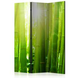 Room Divider Sun and bamboo [Room Div