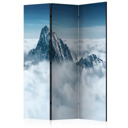 Room Divider Mountain in the clouds [