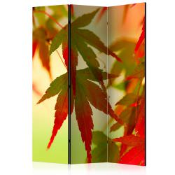 Room Divider Colourful leaves [Room D