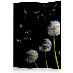 Room Divider Dandelions in the wind [