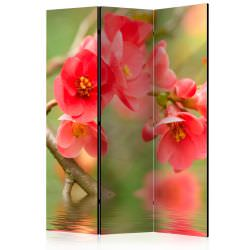 Room Divider Azalea reflected in the