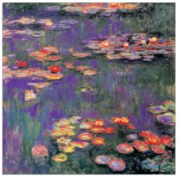 Quadro Decorativo White Purple Water Lillies 9809