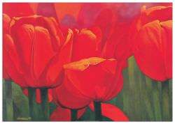 Quadro Decorativo Red Time For Tulips