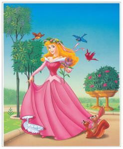 Quadro Decorativo Sleeping Beauty