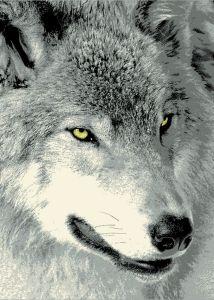 c10acef21362 Alfombra para interiores Narcissus Wolf alfombra moderna con la imagen de  un lobo en tonos de Gris en oferta en mpc shop ...