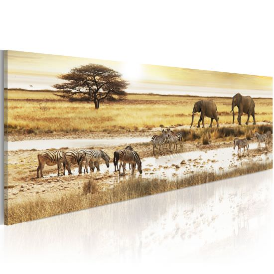 Wandbild Africa at the waterhole