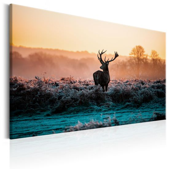 Quadro Frosted Field
