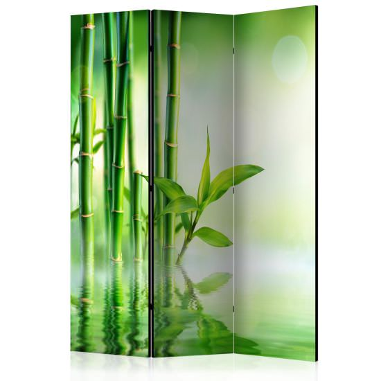 Paravento Green Bamboo Room Dividers