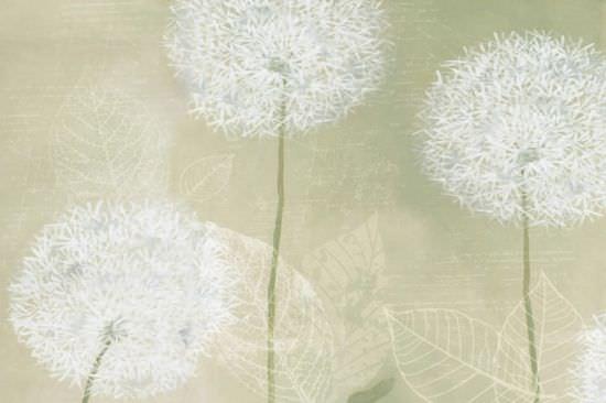 Carta da Parati Flower