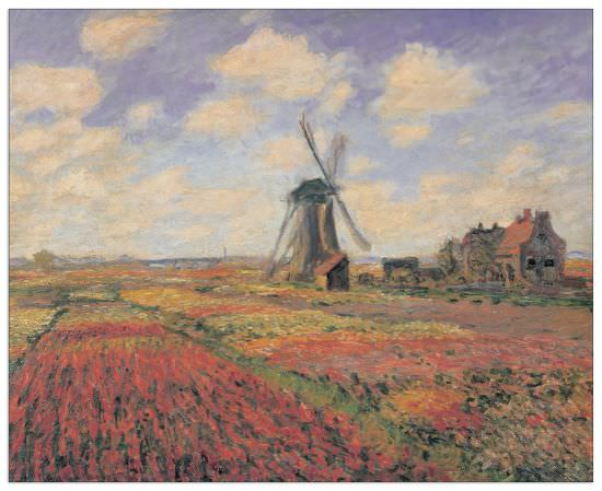 Quadro Decorativo Tulip Fields With Windhill