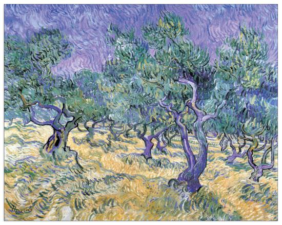 Quadro Decorativo Olive Grove