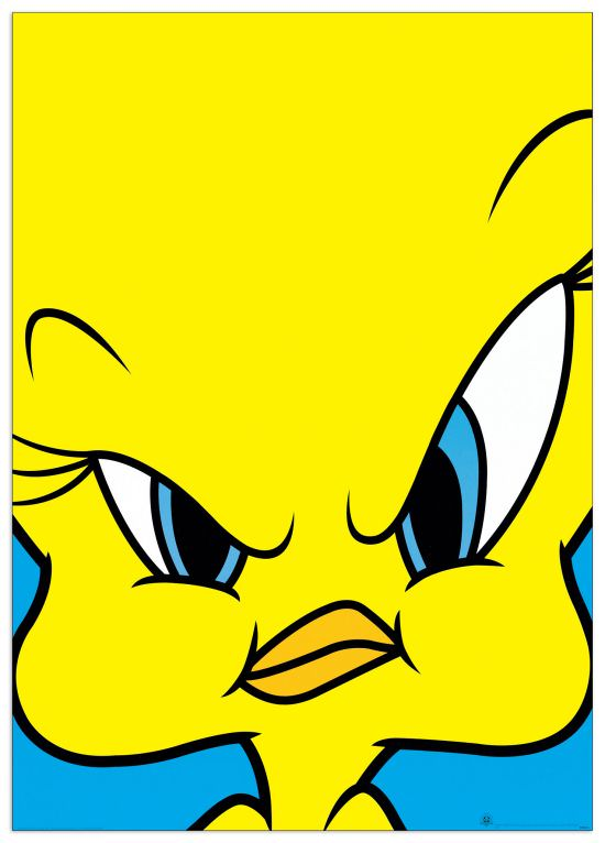 Quadro Decorativo Tweety