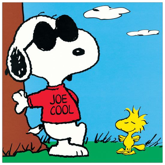 Quadro Decorativo Peanuts Joe Cool