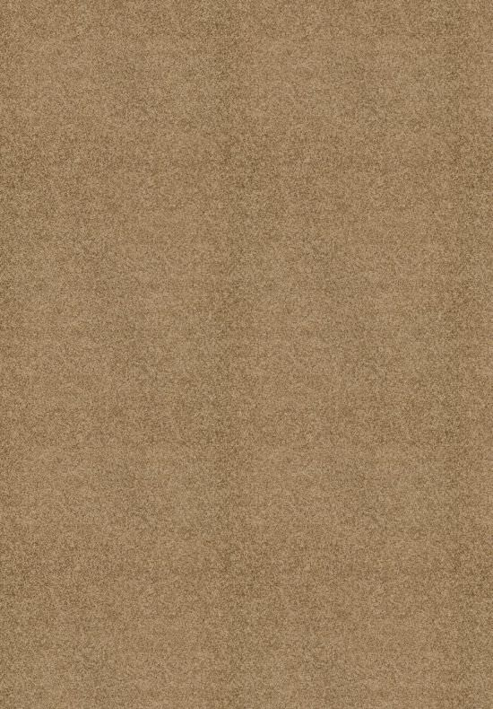 Solid Iris carpet Brown 120x170